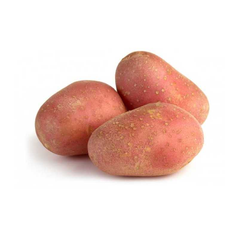 kg patatas rojas ecologicas