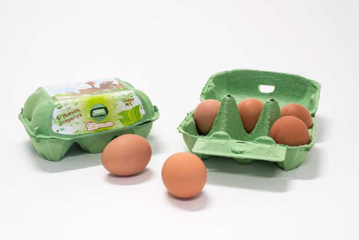 Pack de 6 Huevos Camperos
