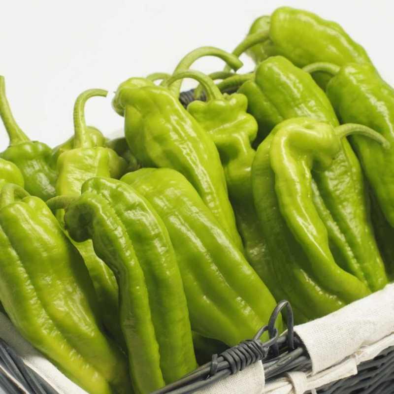 kg Pimiento Verde italiano