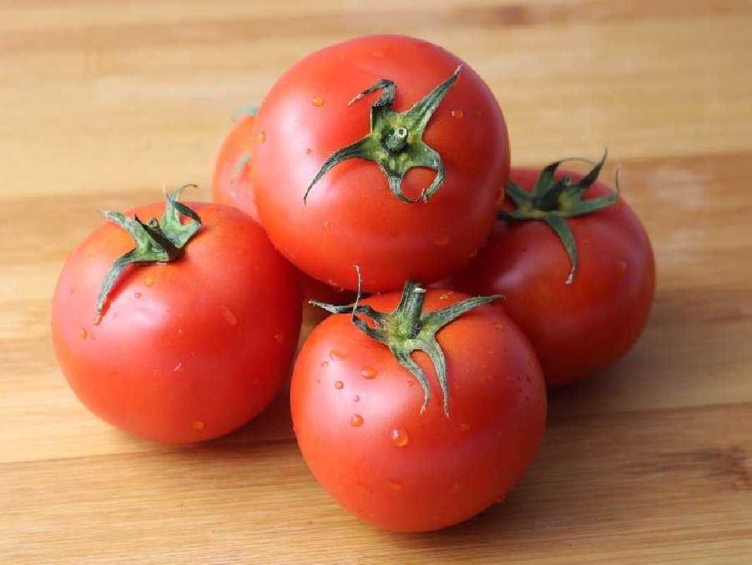 Kg de Tomate Ecologico