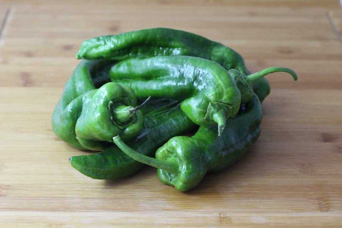 kg Pimiento Verde italiano ecologico