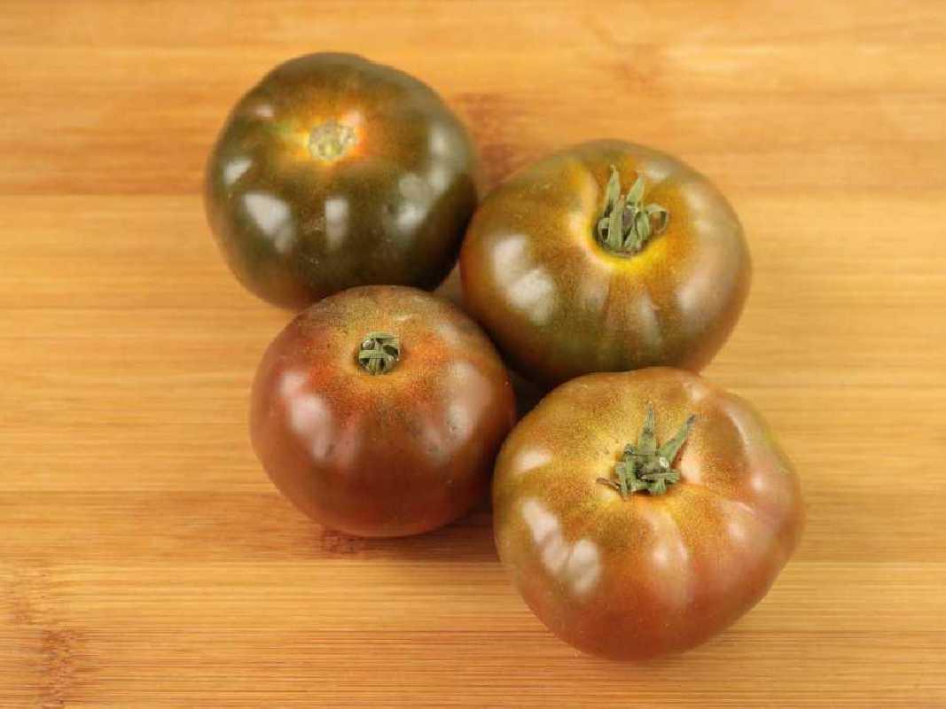 500gr de Tomates Otelo Ecológicos