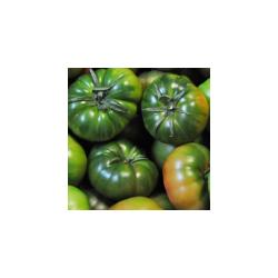 Tomate Asurcado (900-1000gr)