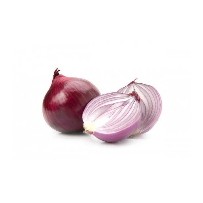 kg Cebolla rojo Ecologica