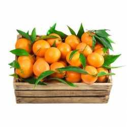 Caja de Mandarinas 5kg