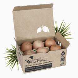 Pack de 6 Huevos Ecológicos