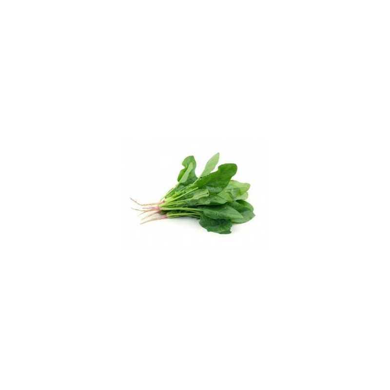 Manojo de Espinacas