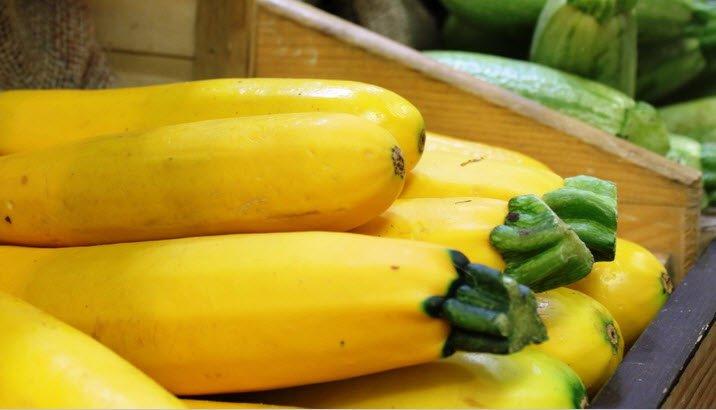 calabacin-amarillo